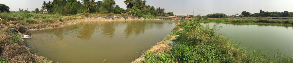 Smart Aquaculture : real conditions experimentation in Ghana