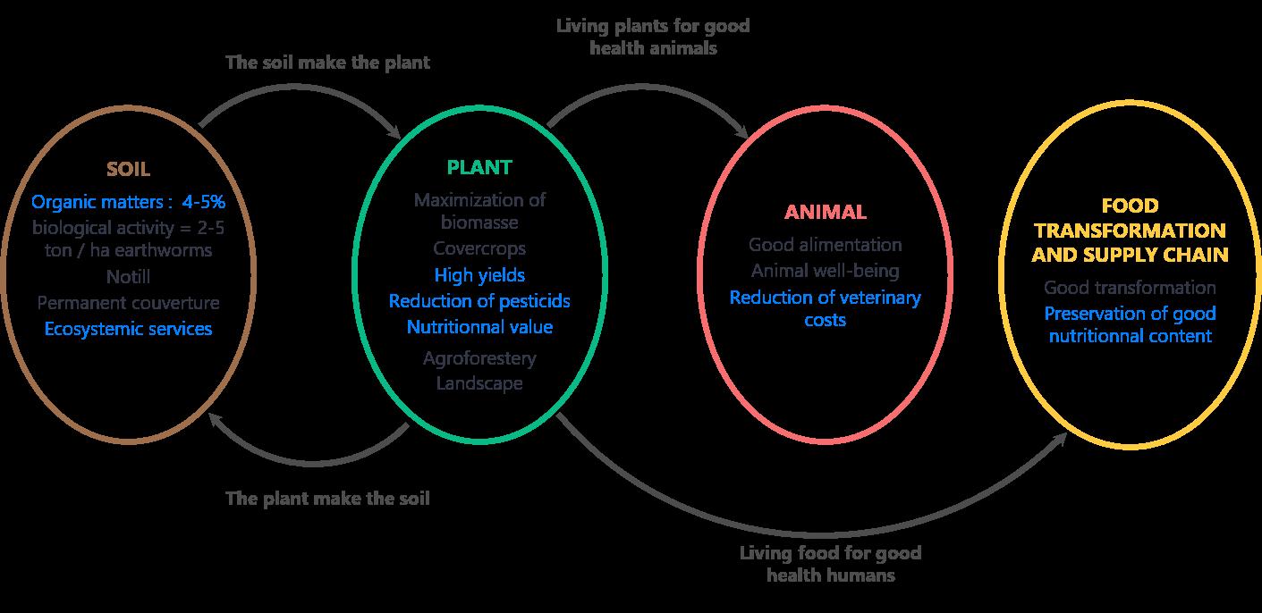 Cycle de l'agroecologie
